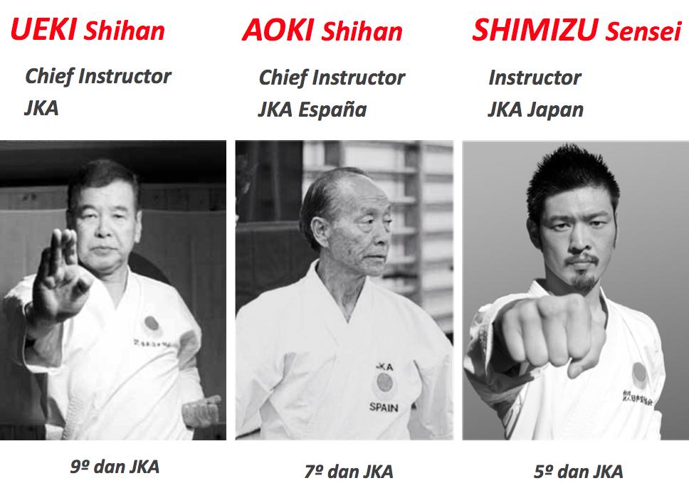 Curso Internacional Karate JKA